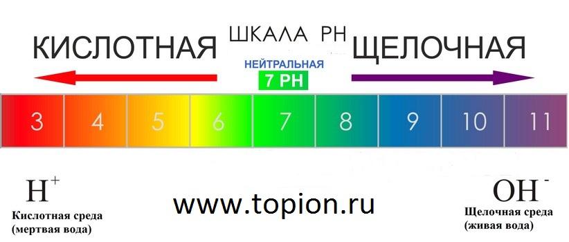 ph-vlagalisha-shelochnaya-sreda